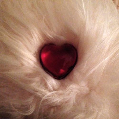 un coeur de cristal pour illustrer la Saint-Valentin de CasaTisana @2015Véronique Caron