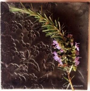 romarin-en-fleurs-casatisana